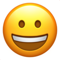 Picture of the Smiling Face Emoji